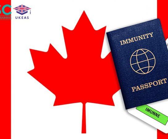 Hướng dẫn phỏng vấn visa du học Canada